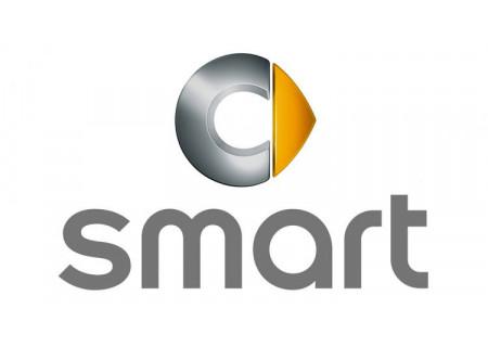 Coque de clé avec électronique Smart