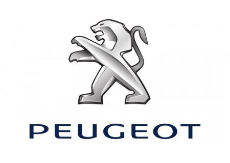 Clés avec électronique Peugeot